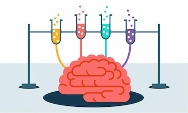 Peneliti Menemukan Sirkuit Kesedihan Dalam Otak Manusia